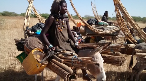 Life on the move for the Fulani tribesmen and women